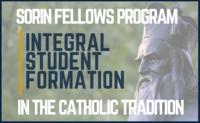 Sorin Fellows Program